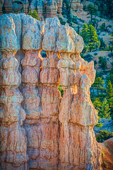 Goblins at Dawn (William Horton Photography) Tags: sunrise dawn utah brycecanyon hoodoos goblins brycecanyonnationalpark fairylandlooptrail clarionformation