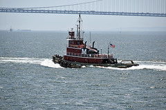 Picture Taken From The Staten Island Ferry Of The Tugboat Marie J  Turecamo. Photo Taken Monday June 27, 2016 (ses7) Tags: ferry island staten viewtugboat