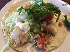 HALIBUT TACO (Adriene Hughes) Tags: tacos mexicanfood foodporn halibut foodie fishtacos sandiegofood
