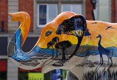 Herd of Sheffield elephant sculptures (1) (Simon Dell Photography) Tags: herdofsheffield herdof sheffield herd eliphants statues town city sculptures colorfull awsome 2016 trail see find them locations
