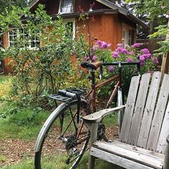 Here's to weekends, bike rides and relaxing in the garden! (Walnut Studiolo) Tags: ifttt instagram walnut studiolo