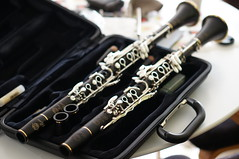 A happy couple, Selmer Privilege Mk I (Z!SL) Tags: dof bokeh sony depthoffield instruments clarinet bokehwhores bokehwhore sonyphotographing minoltaemount sel50f18 nex5r