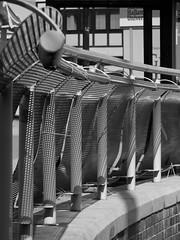 meshed (Harry Halibut) Tags: street shadow bw streetart art blancoynegro public branco fence blackwhite gate noiretblanc howard circles steel sheffield preto barrier zwart wit weiss bianco blanc nero arundel stainless allrightsreserved noire schwatz publicartinsheffield anglesanglesangles circlescirclescircles sheffieldmetal contrastbysoftwarelaziness 2015andrewpettigrew sheff1503222774