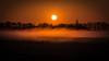Above the ground fog. (Jaco Costerus.) Tags: waardenburg greylaggeese zonsopkomst foggysunrise grauweganzen hetbroek gemeenteneerijnen nikond610 zonsopkomstmist sigma150600mmsports sunrisegroundfog