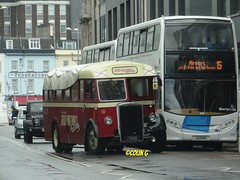 Wet Tiger (Coco the Jerzee Busman) Tags: uk bus islands coach britain great jersey char tours channel banc