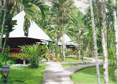 Hotel El Pizote Lodge - Bungalows