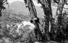 Fine Art Ballet Landscapes! Nikon D810 Photos of Ballerina Dance Goddess Photos! Pretty, Tall Ballet Models Captured with Nikon 70-200mm f2.8 ED VR II AF-S Nikkor Zoom Lens ! (45SURF Hero's Odyssey Mythology Landscapes & Godde) Tags: ballet landscape dance ballerina dancing fineart scenic dancer professional pro pointe pointing tutu prettygirl leotard longlegs gorgeousgirl prettywoman pointeshoes balletdancer onpoint gorgeouswoman balletgirl balletmodel onpointe pointeing professionalballerina elliotmcgucken proballet nikond810photosofballerinadancegoddessphotospretty tallballetswimsuitballetbikinimodelgoddesscapturedwiththenikon70200mmf28edvriiafsnikkorzoomlens fineartballerinas