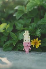 Love in Green (L Dung) Tags: mini nano danbo danboard