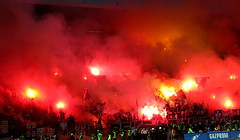 Delije / Crvena Zvezda (nemico publico) Tags: riot fans pyro derby fk hooligans ultras zvezda crvena beograde partizanbelgrade