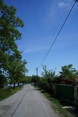 Drumul catre Gorgova