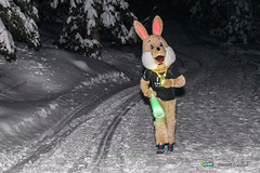 16-Ut4M-BenoitAudige-0593.jpg (Ut4M) Tags: france alpes animaux nuit animations lapin chamrousse belledonne isre stylephoto ut4m ut4m2016reco