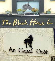 Black Horse Inn, Dublin 8. (piktaker) Tags: ireland dublin bar pub inn eire tavern pubsign roi innsign publichouse republicofireland blackhorseinn