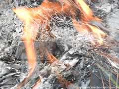 DSCN2512 (moisesbarcellos) Tags: life book power dancing flames books burn firedancing ember fier