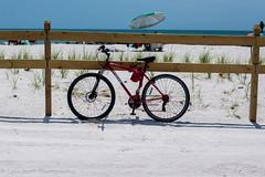 Honeymoon Island State Park (BuccaneerBoy) Tags: dunedin florida birds sand beach trees bicycle fun family honeymoonisland park may spring water
