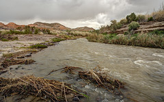 Arroyo (magnetic_red) Tags: plants storm mountains water rain clouds river stream scenic bank splash rushing
