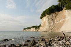 Weie Kliffs (Caora) Tags: germany buchenwald nationalpark unesco rgen whitecliffs buchen kreidekste jasmund