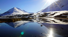 if paradise is half as nice ... (lunaryuna) Tags: panorama snow mountains ice sunshine reflections season landscape coast iceland spring fjord lunaryuna seeingdouble sunflare olafsfjordur northiceland lightmood northernmirrorworlds seasonalwonders winterresisting