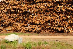 Wood, Stone and Roads (Fred Watkins (kg4vln)) Tags: wood stone nikon roads lumberyard buildingblocks perrygeorgia d3000 kg4vln civilazations interforlumber