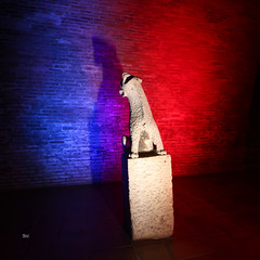 "gargouille 066 (""wil"") Tags: light lightpainting black wil noir muse toulouse gargouille toulouselightpainting wil4416 lightpaintingtoulouse wilfriedivanes musedesaugustinstoulouse musephotoprsentation nuitdesmuses2016"