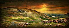 Goodbye for Now (Jan 130 ( ill )) Tags: uk england landscape lakedistrict cumbria goodbye textured aurevoir adis farvel hardknottpass adeus  aufwiedersehen vaarwel  arrivederci adj hadet  hambakahle totsiens kwaheri jan130