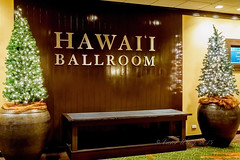 Hawai'i Ballroom (Victor Wong (sfe-co2)) Tags: usa hawaii hotel audience waikiki talk ballroom conference honolulu sheraton speech auditorium 2015 pacifichem