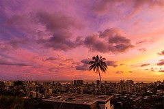 Sky Over Honolulu, Hawaii | Photography by Spyhi (manbeachrm) Tags: morning pink sunset red sky orange sun nature beautiful silhouette night clouds sunrise warm pretty view gorgeous horizon cloudporn photooftheday skyporn allsunsets instagood instasky tagsforlikes tflers tagsforlikesapp piclogy