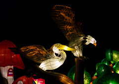 _DSC9682_2 (Elii D.) Tags: light fish flower animal night zoo monkey neon dragons lantern lampion dargon