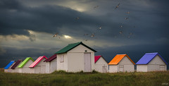 Beach cabins_2 (pontesrocs) Tags: cabins beach seascape sea birds colors stormy clouds light