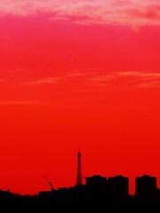 Paris passion (nathaliedunaigre) Tags: red black paris rouge noir toureiffel