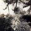 Madame Rousseau rêve (andrefromont) Tags: douanierrousseau lerêve fernandomort andréfromont andrefromontfernandomort