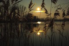 Sonnenuntergang am See (Delbrücker) Tags: see sonnenuntergang natur romantik nikkor2470 nikond7100