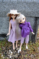 Friendship (Ninotpetrificat) Tags: anime cute primavera japan toys spring doll handmade manga hobby lila kawaii sombrero juguete puppe mueca silverhair azone obitsu japantoys asuna japandoll mamachapp
