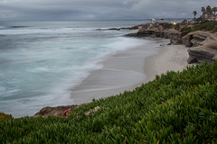 Ice Plant and Waves (Photos By Clark) Tags: california ca clouds coast waves unitedstates pacific sandiego cities places lajolla location where socal iceplant northamerica subjects locale canon2470 beachshots canon60d