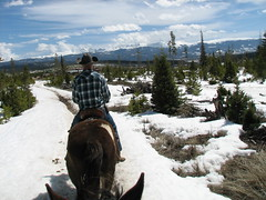 Sombrero Stables YMCA of the Rockies (rachaellazenby) Tags: travel horse usa mountain snow hat rockies spring cowboy colorado co april sombrero tabernash equestrian horseriding 2016