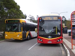 3235&3313-Crafers-19_05_16 (Lt. Commander Data) Tags: autumn stirling may southaustralia scania parknride 3313 2016 hahndorf adelaidehills mtlofty crafers 3235 clelandwildlifepark mtbarker cb80 volgren l94ub customcoaches cr224l k280ub
