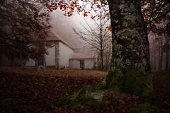 Santo Cristo de Burdindogi (arbioi) Tags: naturaleza paisaje bosque montaa euskalherria navarra nafarroa nieblas iragi eugi anue egozkue eos40d iragui egozcue esteribar burdindogui