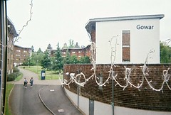 Gowar from Wedderburn. (findwillow) Tags: 35mm fujifilm disposablecamera quicksnap unilife royalholloway c41 filmphotography