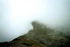 untitled. (rwed) Tags: travel parque film nature analog trekking volcano costarica t5 nacional yashica centralamerica mochilero