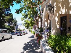 San Francisco (FRAUSCHNERT) Tags: sanfrancisco steil strasen sehenswrdigkeit architektur kalifornien sommer hitzewelle roadtrip rundreise mietwagen unterwegs highlights usa amerika westkste hitze heis urlaub frauschoenert reise highwaynr1
