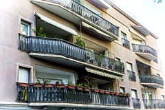 Balconies (Fnikos) Tags: flower building window nature wall architecture facade outdoor balcony buildingcomplex