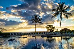 Kauai Beach Resort (Andrea Garza ~) Tags: tropical kauai kauaibeachresort island paradise pool palms palm palmtree reflection sunrise hawaii