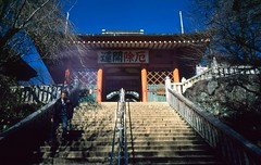 Mt. Takao. (monkeyanselm) Tags: leica m6ttl 058x 35mmf14 summilux asph fujifilm provia rangefinder analog camera film tokyo japan december 2015