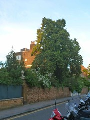 P1140374 The Chelsea no one knows (londonconstant) Tags: london architecture streetscapes promenades londonconstant costilondra
