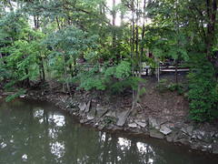 Berea 06-28-2016 - Rocky River 2 (David441491) Tags: water river oh riverbank berea