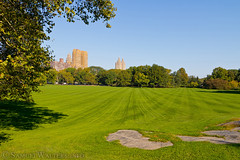 Across Sheep Meadow (SamuelWalters74) Tags: newyorkcity autumn trees newyork unitedstates centralpark manhattan fallcolors places autumnleaves autumncolors fallfoliage sanremo sheepmeadow themajestic