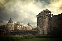 Château de Fougères (BrigitteChanson) Tags: castle bretagne breizh castello château castillo fougères illeetvilaine