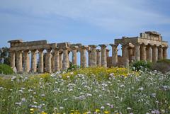 Selinunte : le Temple E (CpaKmoi) Tags: italia italie selinunte hera sicile sicila templee coth5 ruby5
