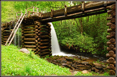 You Might Want To Watch That 2nd Step (Jerry Jaynes) Tags: park plants mill water creek nationalpark nc woods rocks northcarolina rhododendron ladder gristmill gsmnp timesgoneby mingusmill greatsmokymountainnationalpark missingsteps tripodphotography nikkor1685vr