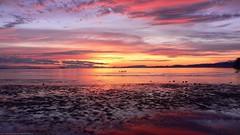 tumblr_m78mnvPIZq1rtfr0go1_1280[1] (uranus_travel) Tags: ocean sunset beach nature sunrise landscape photo amazing scenery