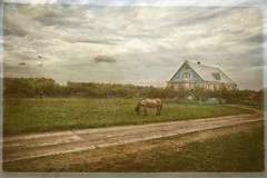 In the Russian province (Unicorn.mod) Tags: september textures province 2015 canoneos6d samyang24mmf14edasifumc